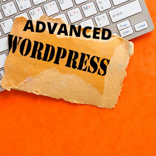 WordPress Agency in Pune 31