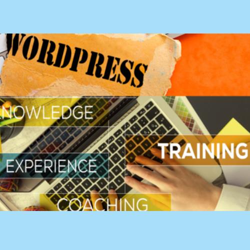 WordPress Agency in Pune 32
